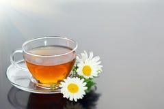 Tasse transparente avec le thé vert et le bouquet de fines herbes frais Photo libre de droits