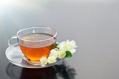 Tasse transparente avec le thé vert et le bouquet de fines herbes frais Image libre de droits