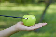 Tassel draw green apple in a man hands. Close up Royalty Free Stock Images
