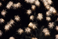 Tassels in the Night Sky. Delicate tassel like firework patterns in the night sky Royalty Free Stock Images