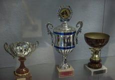 Tasses avec des prix gagnés par des chevaux, Image libre de droits