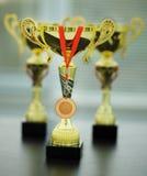 Tasses d'or avec la médaille Photographie stock libre de droits