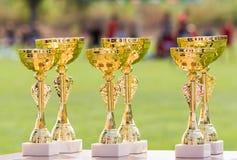 Tasses d'or de trophée de beau champion pour des gagnants dans des élém. du football Images libres de droits