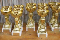 Tasses d'or de trophée pour des gagnants Photographie stock libre de droits
