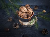 Tasses de noix épluchées Branches de sapin Fond foncé photographie stock