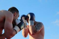 tassi för sandor för ramocsa för boxareluca match vs Arkivbilder