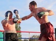 tassi för sandor för ramocsa för boxareluca match vs Arkivfoto