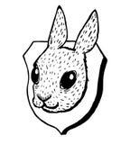 Tassidermia della testa del coniglio di lerciume Fotografia Stock