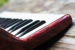 Tastatur von accordian Stockbild