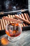 Taste and aroma of cognac and cigar Stock Photos