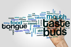 Taste buds word cloud. Concept on grey background Royalty Free Stock Photos