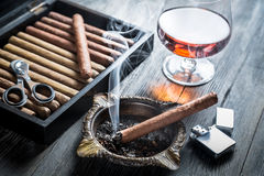 Taste of cognac and cigar fuming Stock Photography