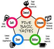 Taste Stock Photos