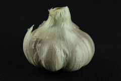 Taste of garlic. This  photograph was taken at125th at f11 on black back ground Royalty Free Stock Photography