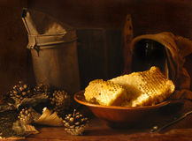 Taste of honey. Still-life with beer honey royalty free stock photos