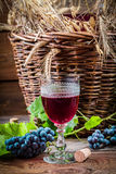 Taste of red wine straight from the demijohn. On old wooden table Royalty Free Stock Photo
