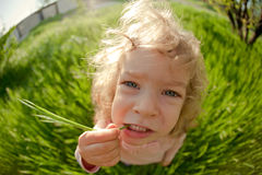 Taste of summer. Funny child in summer field royalty free stock photos