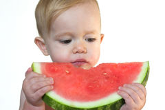 Taste of Summer. Image of cute toddler eating a big piece of watermelon Stock Photos