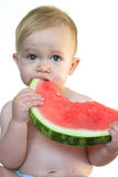 Taste of Summer. Image of cute toddler eating a big piece of watermelon Royalty Free Stock Photography