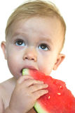 Taste of Summer. Image of cute toddler eating a big piece of watermelon Royalty Free Stock Photo