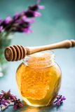 Taste of summer, honey with comb and lavender Stock Photography