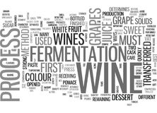 A Taste Of Wine Word Cloud Royalty Free Stock Photo