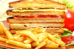 Tasteful club sandwich. In white background Royalty Free Stock Photography