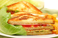 Tasteful club sandwich. In white background Royalty Free Stock Images