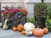 Tasteful Fall Decorations Royalty Free Stock Photography