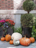 Tasteful Fall Decorations. Tasteful home decorations welcoming the fall season Stock Photos