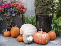 Tasteful Fall Decorations. Tasteful home decorations welcoming the fall season Stock Photo