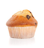 Tasteful muffin Royalty Free Stock Photos
