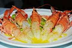 Tasteful prawns with oil on a white plate background, close up stock image