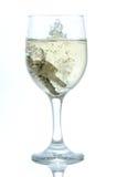 Tasten im Glas weißem Wein lizenzfreie stockbilder