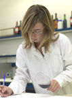 Taster. Professional working into a cellar laboratory Spain vertical Stock Photo