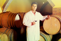 Taster of winery posing with wine. European taster of winery posing with wine in cellar Royalty Free Stock Photography