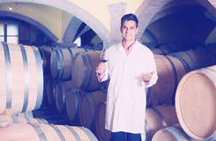 Taster of winery with wine in cellar. Cheerful smiling professional taster of winery posing with wine in cellar Royalty Free Stock Images