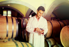 Taster of winery with wine in cellar Royalty Free Stock Photography