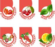 Tastes of berries Toper Stock Image