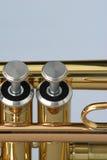 Tasti della tromba Fotografie Stock