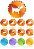 Tasti di Web dell'animale domestico - guarnizione Fotografie Stock Libere da Diritti