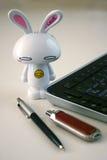 Tastiera di calcolatore con il coniglietto di pasqua Fotografia Stock