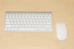 Tastiera e topo immagini stock