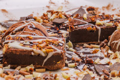 Tasting assortment of chocolate Royalty Free Stock Image