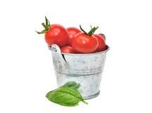 Tasting cherry tomatoes Stock Image