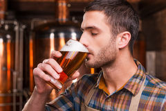 Tasting fresh brewed beer. Stock Photos