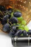 Tasting of grape and bottle of red wine Stock Image
