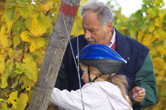 Tasting the grapes with grandfather. Mature winemaker checking hte grapes together with hid grand child Stock Photography