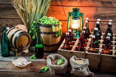 Tasting home-brewed beer in the cellar Stock Image