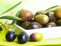 Tasting olive Stock Photo